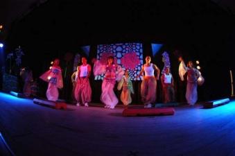 Activity Show & Dance Party